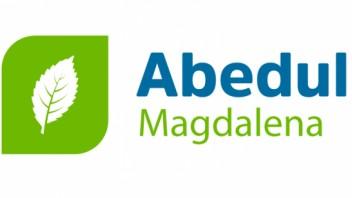 Logo Abedul