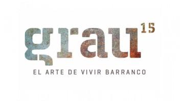 Logo Grau 15