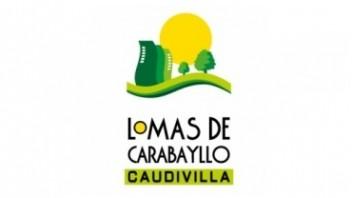 Logo Lomas de Carabayllo Etapa 2